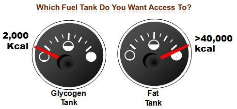 Keto Exercise: Fat vs Carb Fuel Tanks